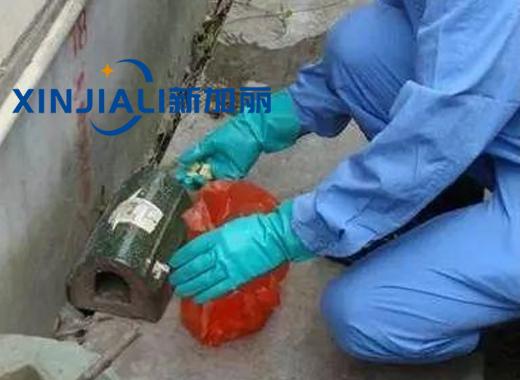 贵州办公室灭鼠